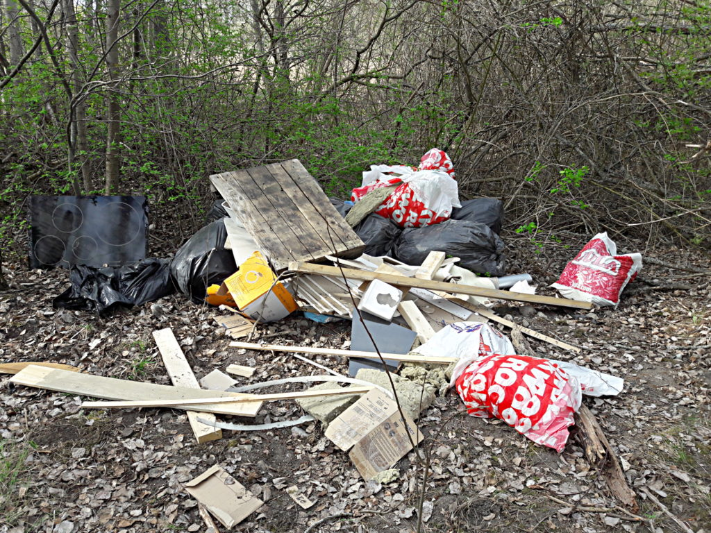 Dumpning av avfall och andra brott
