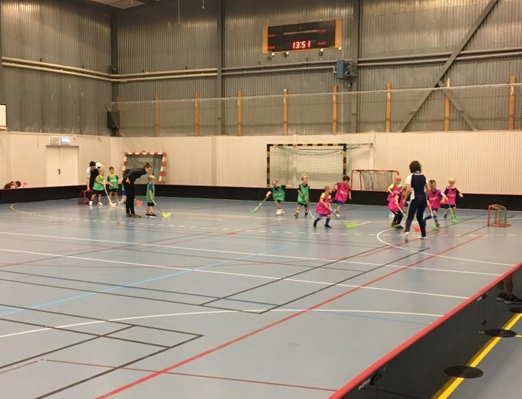 Parasport hos Ekerö IK
