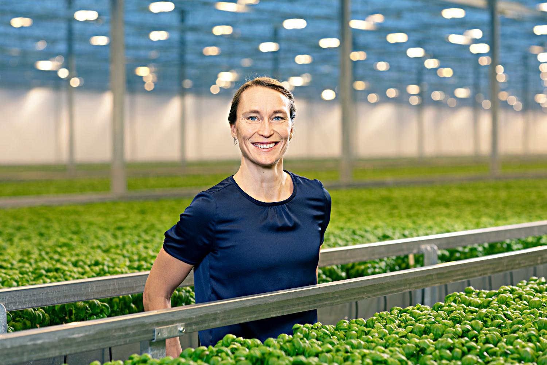Framtidens växthus